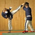 Gibkość w sztukach walki